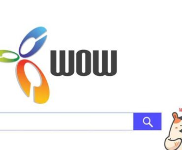 what is wow search engine